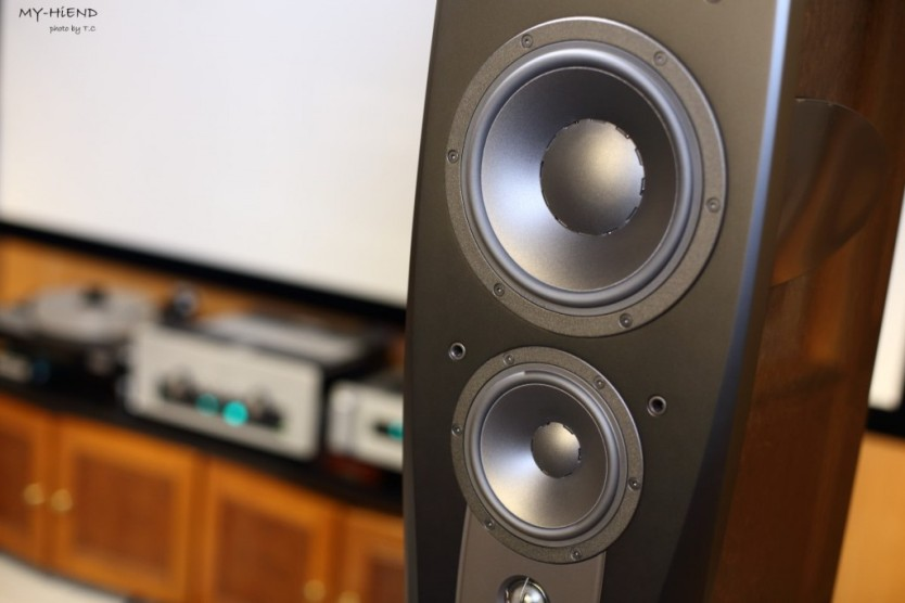 Confidence C4 Platinum具有自家的DDC技術(Dynaudio Directivity Control)。這是一種控制反射的技術,降低房間對聲音的影響,精確的頻率和相位調節及定位,減少了75%的地板和天花板邊界反射,標榜減少透過電子校正改變音樂訊號,讓聽者更接近音樂。